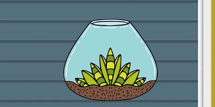 ide bisnis terrarium
